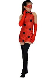 Lady Bug Red Little Spandex Lycra Dress with Stockings Gloves and Eye Mask
