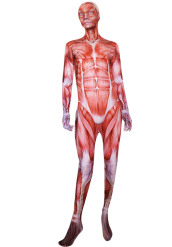 Muscle Printed Zentai Suit | Attack on Titan Bodysuit